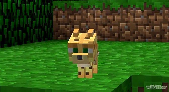 In Minecraft gibt es sogar Ozelots In den großen Spielwelten von Minecraft leben zahlreiche Tiere und Monster Diese NPCs werden vom Computer gesteuert erscheinen an zufälligen Plätzen in der Spielwelt und sind entweder friedlich oder feindlich